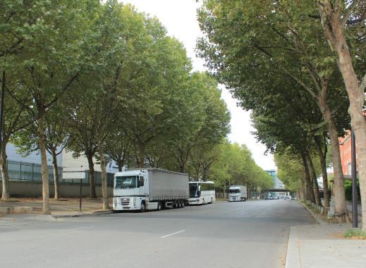 行道樹提供良好綠蔭(巴黎)