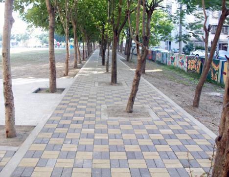 增加綠蔭空間