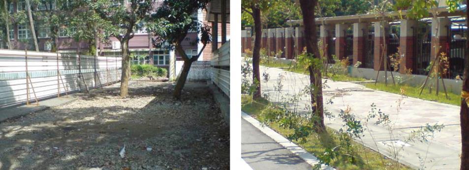 增加環境綠蔭空間